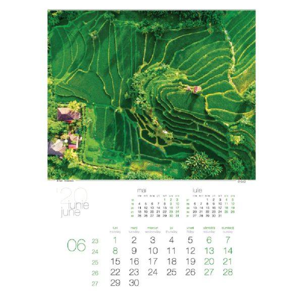 Calendar de perete Green personalizabil folio, timbru sec, print UV sau gravare laser.