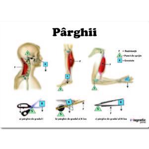 Parghii - plansa educationala