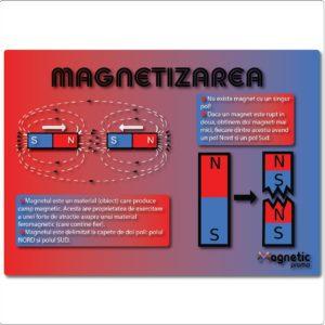 Magnetizarea - plansa educationala